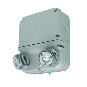 Hubbell-Dual-Lite DYNRD-4X ACCESSORY REMOTE DOUBLE HEAD F/4X3W LI