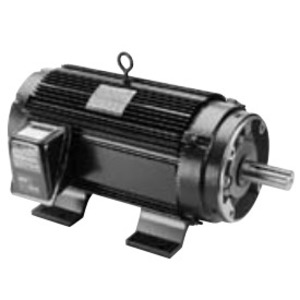 Marathon Motors 056H17T5302 Replacement Motor