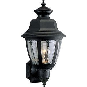 Progress Lighting P5737-31 Lantern, Outdoor, 1 Light, 60W, Black
