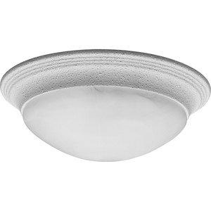 Progress Lighting P3689-30 Ceiling Light, 2-Light, 60W, White Finish