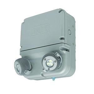 Hubbell-Dual-Lite DYN12-4X-FP-06L Industrial LED Emergency Light, 12 Watt, 2-Head, NEMA 4X