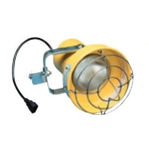 Phoenix Lighting DLINCLH 16W Modular LED Loading Dock Light Head