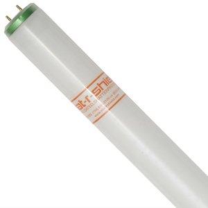 Shat-R-Shield 23018 Fluorescent Lamp, Shatterproof, 20W, T12, 4100K