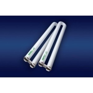 "SYLVANIA FBO31/841/XP/ECO Fluorescent Lamp, U-Bent, Ex. Performance, T8, 22-1/2"", 31W, 4100K"