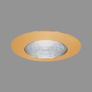 """Elite Lighting B455WH 4"""" Fresnel Lens, White Trim"""