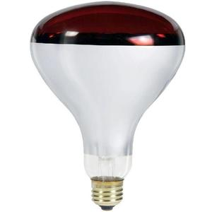 Philips Lighting 250R40/HR/TG-120V-4/1 Incandescent Reflector Heat Lamp, R40, 250W, 120V