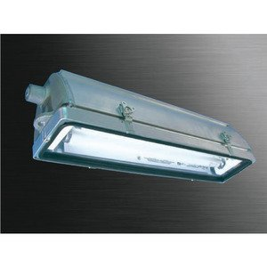 Pauluhn DP42871WMKL LIGHT Fluorescent