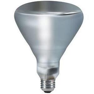 Philips Lighting 250BR40/1/TG-120V-4/1 Incandescent Reflector Heat Lamp, BR40, 250W, 120V