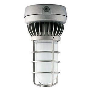 RAB VXLED13DG Jelly Jar, Outdoor, LED, Vaporproof, 13W
