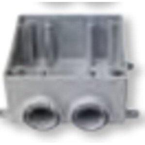 "Bizline 2FSS050 FS Device Box, 2-Gang, 1/2"" Hubs, Dead-End, Non-Metallic"