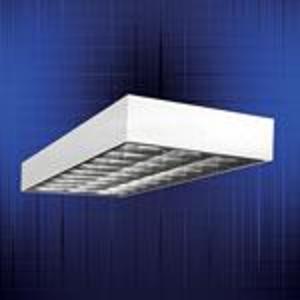 Metalux 2EP3MX-332S36I-UNV-EB81-U 2' x 4' Surface Parabolic, 3-Lamp