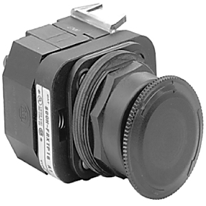 Allen-Bradley 800H-FRXTQH2RA 30MM ILLUMINATED