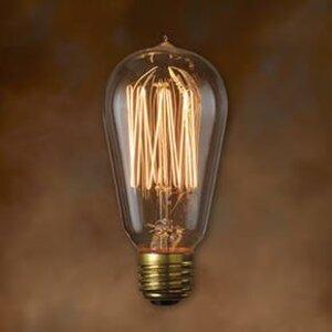 Bulbrite NOS40-1910 Incandescent Bulb, Antique, ST18, 40W, 120V, Thread
