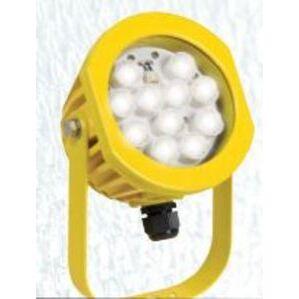 TCP LEDDL16K65Y01 Dock Light, 16 Watt,  6' Cord and IEC 60320 – C14 plug