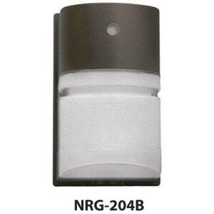 Hubbell - Lighting NRG-204B Wallpack, Compact Fluorescent, 1 Light, 42W, 120-277V, Bronze