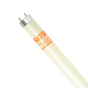 """Shat-R-Shield 46536S Fluorescent Lamp, Coated, T8, 48"""", 32W, 5000K"""