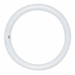 Satco S6500 Fluorescent Lamp, Circular, T9, 22W, 4100K