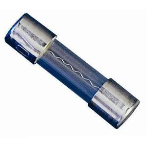 Littelfuse 239.500P .500A, 250V, 239 Series, Slo-Blow Fuse