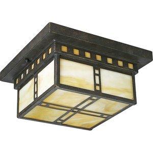 Progress Lighting P3513-46 PROG P3513-46 2-LAMP CEILINGCEILING FIX. W/HONEY ART GLAS