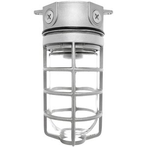 RAB VLX100DG Jelly Jar, Outdoor, Incandescent, Vaporproof, 150W
