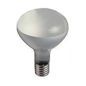 Damar 00579B Incandescent Lamp, R40, 300W, 250V