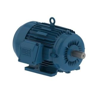 Weg 01036ET3E215T-W22 Motor, 2P, 10HP, 7.5kW, 3600RPM, 208-230/460VAC, Foot Mounted, 213/5T