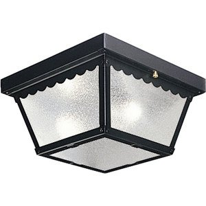 Progress Lighting P5729-31 Ceiling Light, Outdoor, 2 Light, 60W, Black