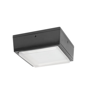 RAB VANLED20 Vandalproof Fixture, 20W LED
