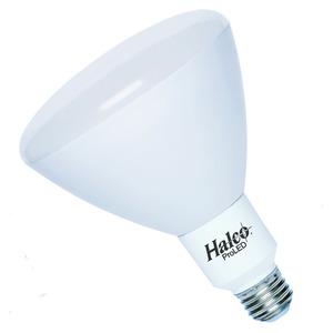Halco 80181 LED BR30 10W 2700K