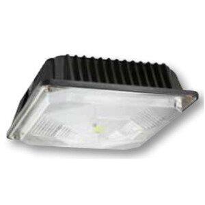 Cree Lighting E.CC5L03NZ Canopy Light, LED, 36W