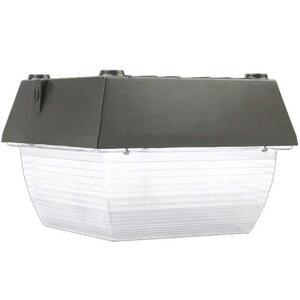 Atlas Lighting Products VN12-100MHQPK 100 Watt MH Vandalproof Fixture