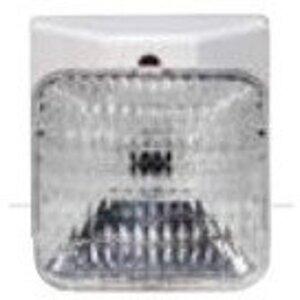 Bizline RXHSW0605 Emergency Light, Single Remote Head, 5.4 Watt Lamp