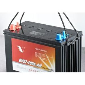 Bright Way Group EV8D-330A-AT Dry Cell Battery, 12.0V @10Hr, 250.0Ah Capacity