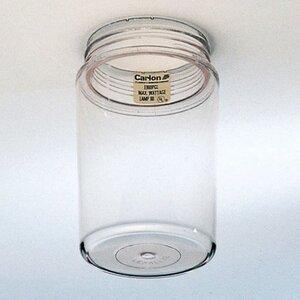 Carlon E960PGL Plastic Globe, Clear