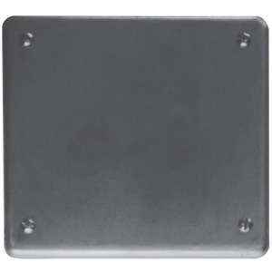 Cooper Crouse-Hinds S1002G Blank Cover, 2-Gang, Iron Alloy