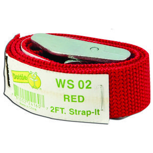 Dottie WS02 Web Strap w/ Buckle, Nylon, 2', Red
