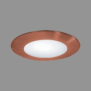 Elite Lighting B452WH 4 Inch Albalite Lens White
