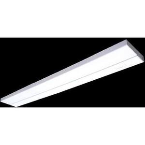 FSC Lighting 3012-120-RSW 120 VOLT FL FIXT