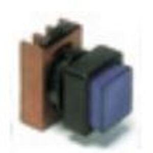 GE P9SPLVSD ILL PB/SQ GRN CAP