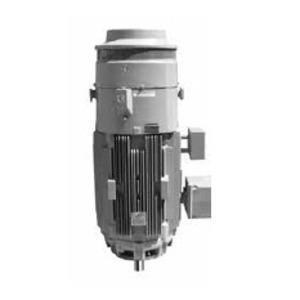 GE V828 GMT V828 5KS254SAE5705 MOTOR