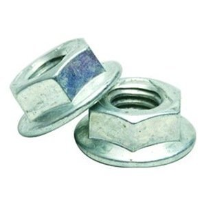 """Gexpro Services 1/4-20FGNTFFSSPASE Serrated Flange Nut, 1/4"""", Stainless Steel, 100/PK"""