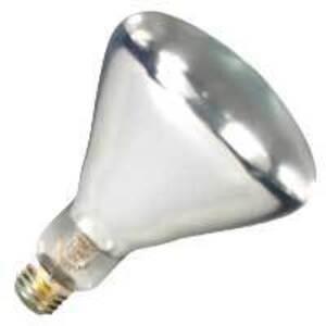 Halco 404066 Incandescent Reflector Lamp, BR40, 250W, 120V