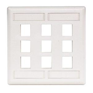 Hubbell-Premise IFP29W PLATE,