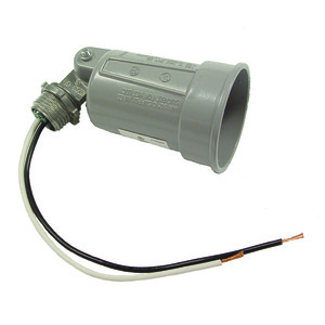 Hubbell-Raco 5606-0 Lampholder, Weatherproof, Gray