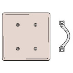 Hubbell-Wiring Kellems NP24I Blank Wallplate, 2-Gang, Standard, Nylon, Ivory, Strap Mount