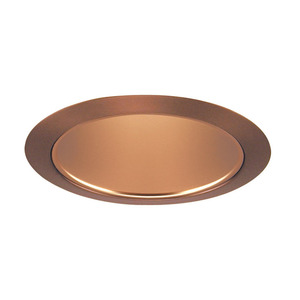 "Juno Lighting 206-WHZABZ Cone Trim, Deep, 5"", BR30/PAR30, Wh. Haze Reflector/Aged Bronze Ring"
