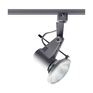 Juno Lighting T218-SL DELTA 200 PAR30