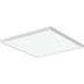Lithonia Lighting CPANL1X4243344
