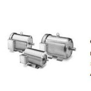 Marathon Motors 4805 Motor, 1800/1500RPM, 1/3HP, 100 -240VAC, 48Y Frame, Carbonator Pump