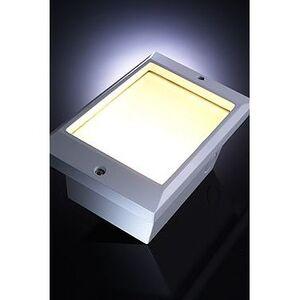 National Specialty Lighting XSL-L-WH Step Light, Xenon, 1 Light, 18W, 120V, White, Wedge Base